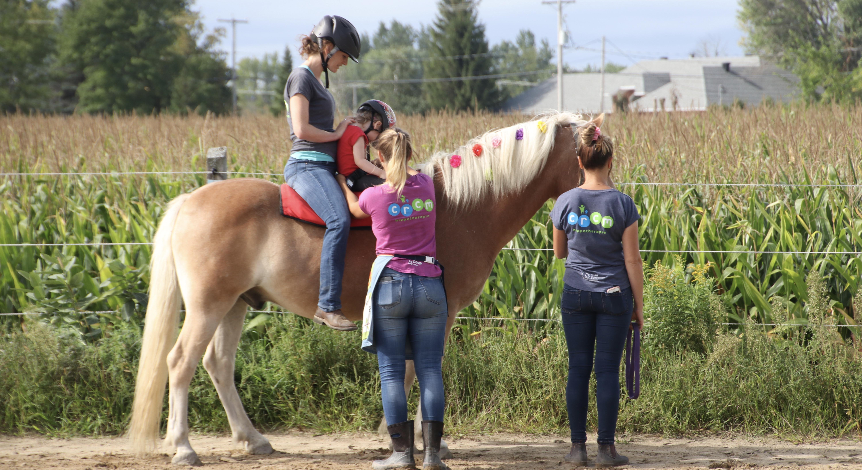 Hippo reach offre de la formation en réadaptation assistée par le cheval sous la méthode reach pour ergothérapeute, physiothérapeute et orthophoniste