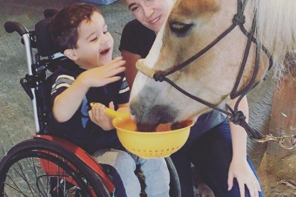 enjeux cliniques de l'utilisation du cheval dans la rééducation
